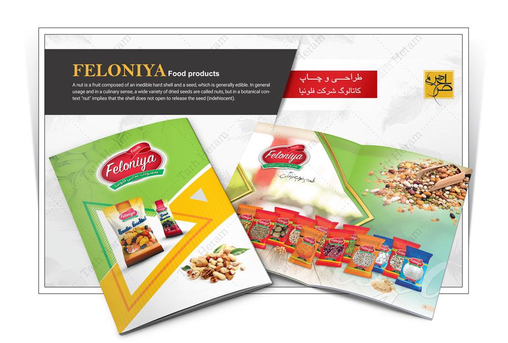 طراحی و چاپ کاتالوگ شرکت فلونیا